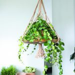 Jute-rope-7-mm-hanging-basket-brochure-page-35-scaled1-150x150[1]